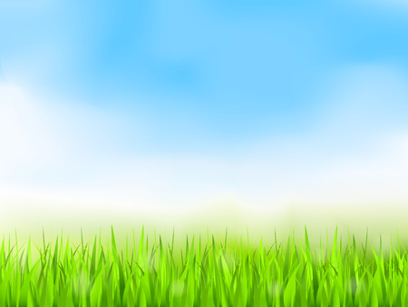 Illustration pour Green grass and blue sky, summer background - image libre de droit