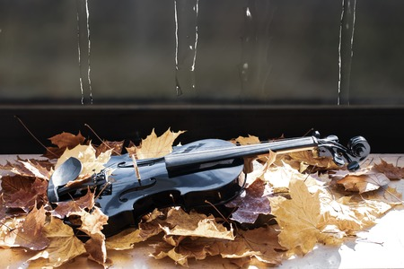 Black violin in maple leaves on the windowsill