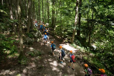 Foto de Group of school children walking in forest in one day excursion - Imagen libre de derechos