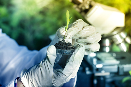 Foto de Close up of biogist's hand with protective gloves holding young plant with root above petri dish with soil. Microscope in background. Biotechnology, plant care and protection concept - Imagen libre de derechos