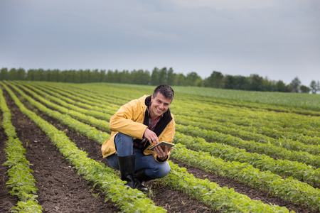 Foto de Young handsome farmer with tablet squatting in soybean field in spring. Agribusiness and innovation concept - Imagen libre de derechos