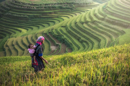 Foto de Mother and child Hmong, working at rice terraces, Mu cang chai,Vietnam - Imagen libre de derechos