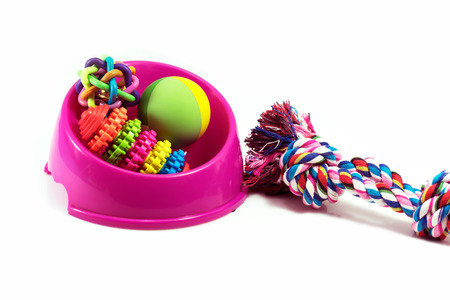 Pet supplies set about bowl, rope, rubber toys for dog or cat on white background