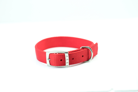 Photo pour Pet supplies about collars of red isolated on white background. - image libre de droit