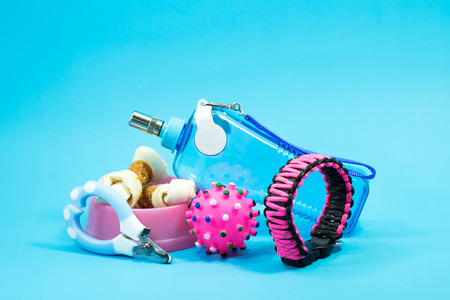 Bowl with snacks, collars, toy, nail scissors and water bottles on blue background. Ideas about pet supplies.