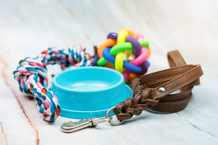 Foto de Pet supplies concept.  Pet leather leashes, brush and rubber toy. - Imagen libre de derechos