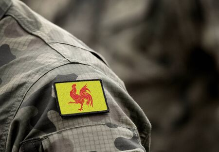 Foto de Flag of Wallonia on military uniform. Walloon Region. Region of Belgium. Collage. - Imagen libre de derechos