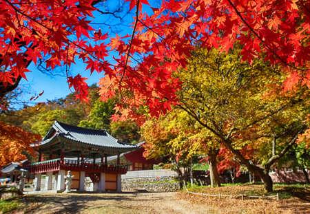 Photo pour Autumn of Gancheonsan Mountain, Sunchang, Jeollanamdo, South Korea Asia - image libre de droit