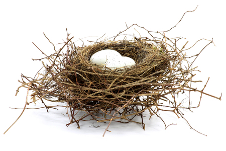 Photo pour bird nest with two eggs isolated on white background - image libre de droit