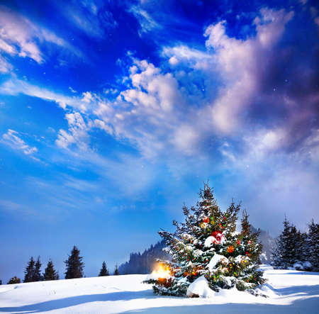 Photo pour Christmas tree with lights in mountain snow forest at dramatic evening background - image libre de droit