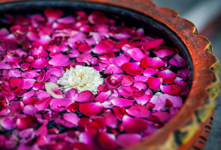 Photo for White flower with red rose petals in the bowl in SPA salon - Royalty Free Image