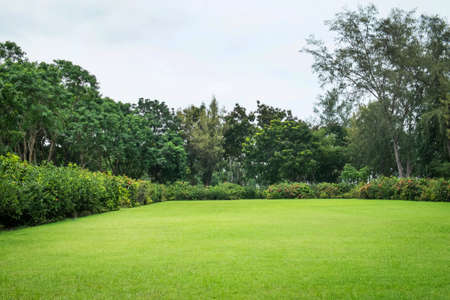 Foto de Peaceful Garden - Imagen libre de derechos