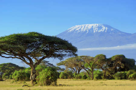 Photo for Snow on top of Mount Kilimanjaro in Amboseli - Royalty Free Image