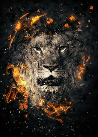 Lion portrait in fire on black background