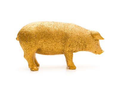 Photo for Golden Pig on white Background - Royalty Free Image