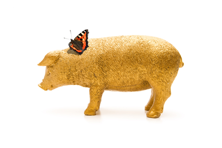 Photo for Pork with cloverleaf and butterfly - Royalty Free Image