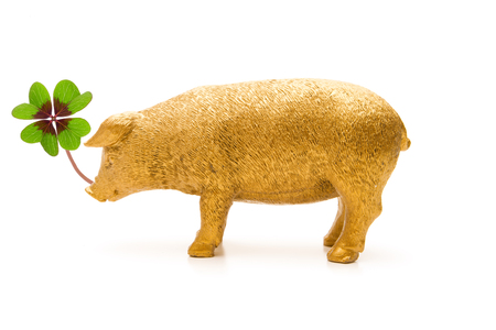 Photo for Pig with Cloverleaf - Royalty Free Image