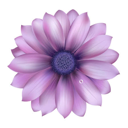 Illustration for Lilac Flower With Water Drop, Vector Background - Royalty Free Image