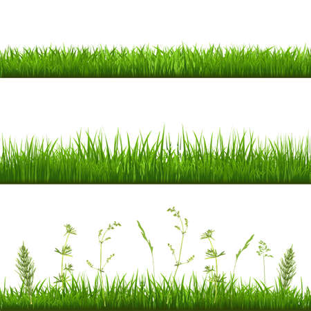 Illustration pour Grass Borders, With Gradient Mesh Illustration - image libre de droit