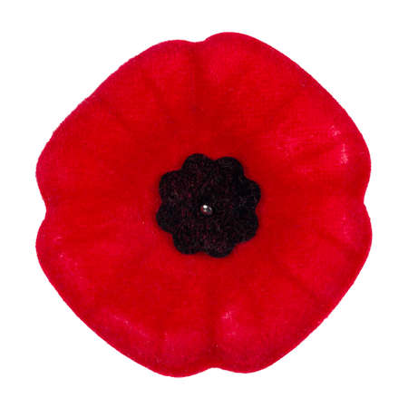 Photo for Poppy pin - Royalty Free Image