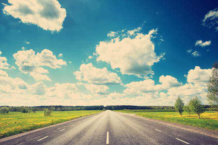 Photo pour Asphalt road and dandelion field on synny day - image libre de droit