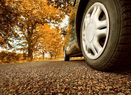 Photo pour Car on asphalt road on summer day at park - image libre de droit