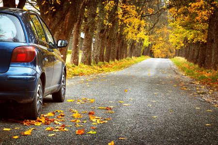 Foto de Car on asphalt road on autumnr day at park - Imagen libre de derechos