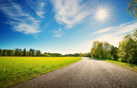 Foto de asphalt road panorama in countryside on sunny spring day.. Route in beautiful nature landscape with sun, blue sky, green grass and dandelions - Imagen libre de derechos