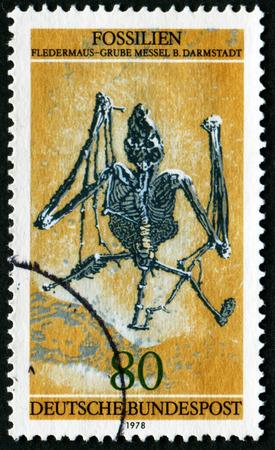 Foto de GERMANY - CIRCA 1978: A stamp printed in Germany shows fossils fledermaus - mine messel B. Darmstadt, circa 1978 - Imagen libre de derechos