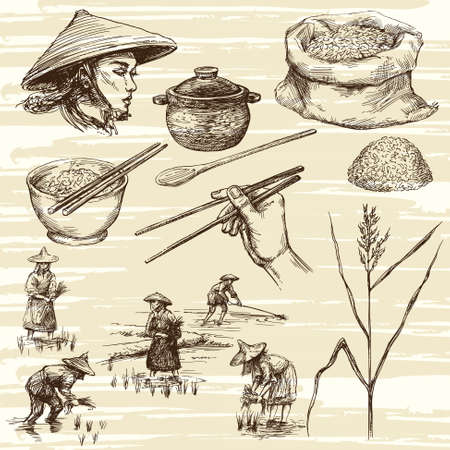 Illustration for hand drawn illustration, rice harvest - Royalty Free Image