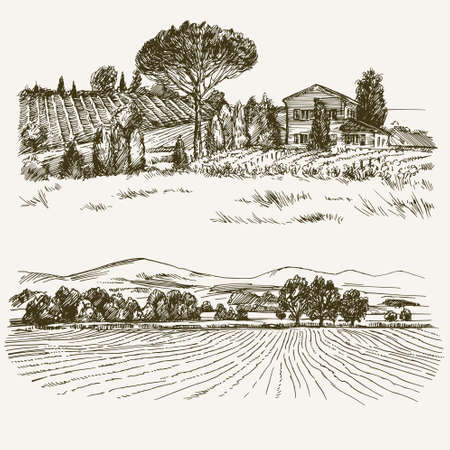 Illustration pour Rural landscape with country house and vineyard. - image libre de droit