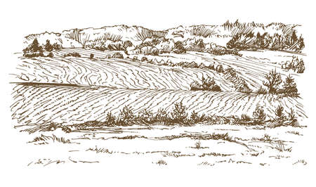 Illustration pour Agricultural landscape  in hand drawn, sketched illustration. - image libre de droit