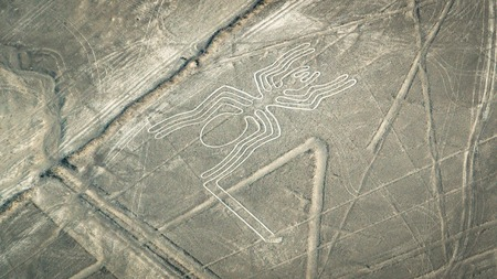 Photo for The Spider figure as seen in the Nasca Lines, Nazca, Peru - Royalty Free Image