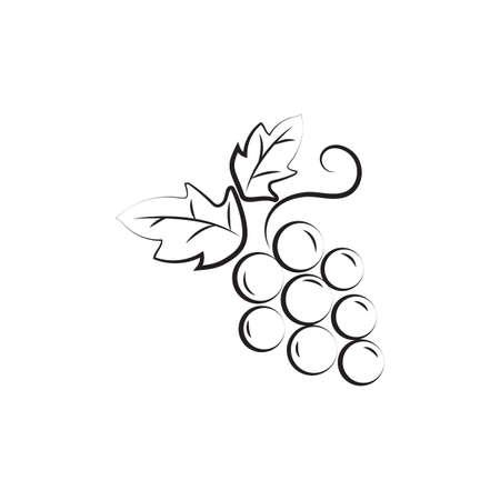 Ilustración de A grapes illustration. - Imagen libre de derechos