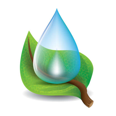 Illustration for leaf with water drop - Royalty Free Image