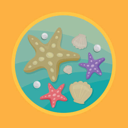 Illustration pour seashell and starfishes - image libre de droit