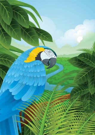 Ilustración de parrot in a rainforest - Imagen libre de derechos