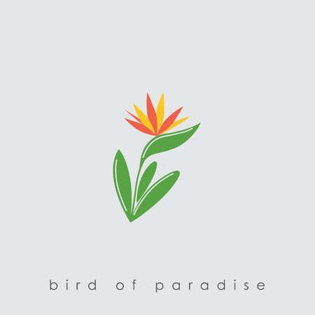 Illustration pour Bird of paradise plant - image libre de droit