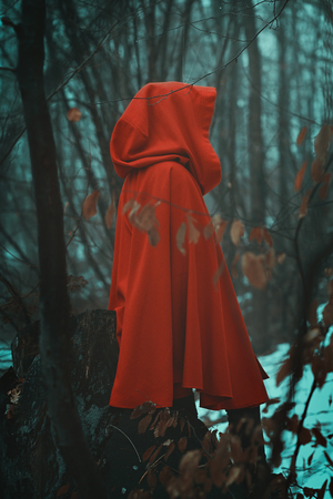 Photo pour Mysterious red hooded person in misty woods - image libre de droit