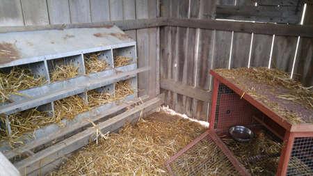 Foto de Interior of chicken coop with 10-hole nesting box. - Imagen libre de derechos