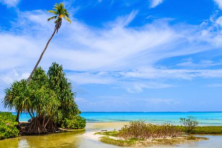 Photo pour Tabuaeran, Fanning Island, Republic of Kiribati.Tabuaeran beach on the Fanning Island, Republic of Kiribati - image libre de droit