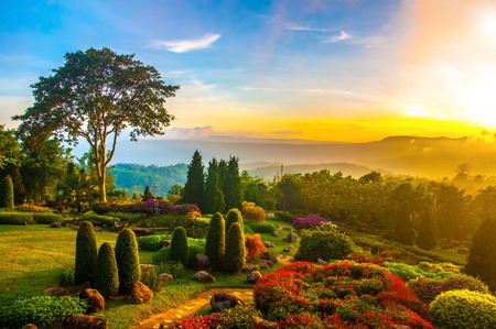 Foto de Beautiful garden of colorful flowers on hill with sunrise in the morning. - Imagen libre de derechos