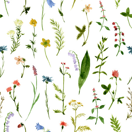 Illustration pour vector seamless pattern with watercolor wild flowers and grass, hand drawn vector background - image libre de droit