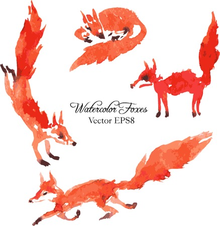 set of watercolor foxes, hand drawn vector illustration