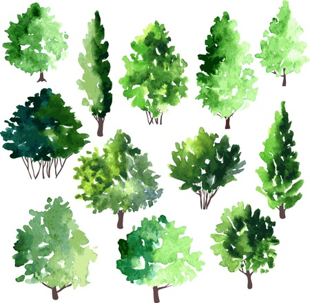 Illustration pour set of different deciduous trees, vector illustration - image libre de droit
