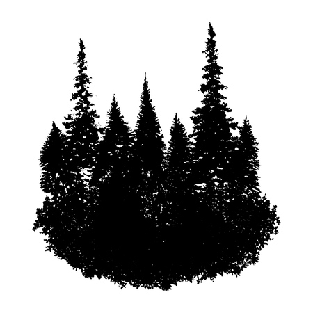 Illustration pour vector landscape with fir trees and grass, abstract nature background, forest template, hand drawn illustration - image libre de droit