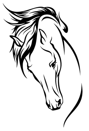 horse head with flying mane illustration