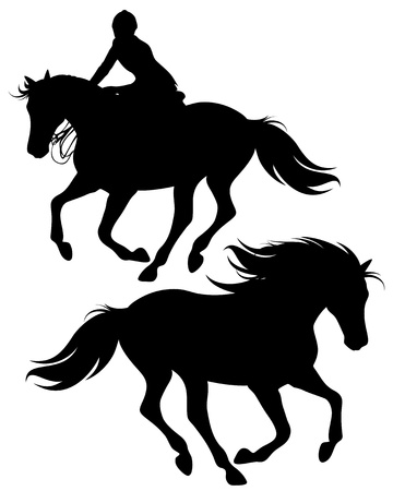 fine silhouettes of horseman riding a horse and wild stallion