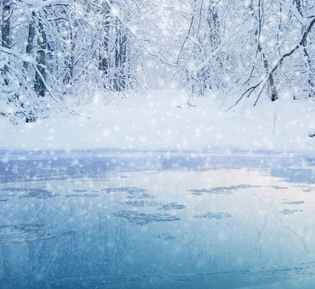 Photo pour winter in the forest - lake and snowy path - image libre de droit