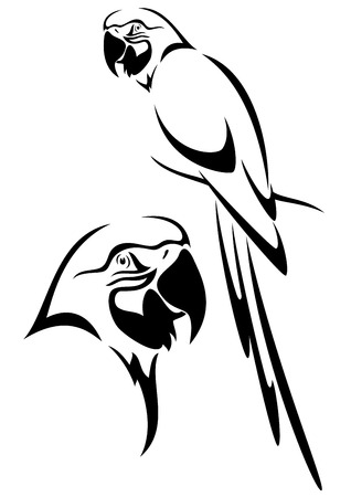 Illustration pour tropical parrot and bird head black and white vector outline - image libre de droit